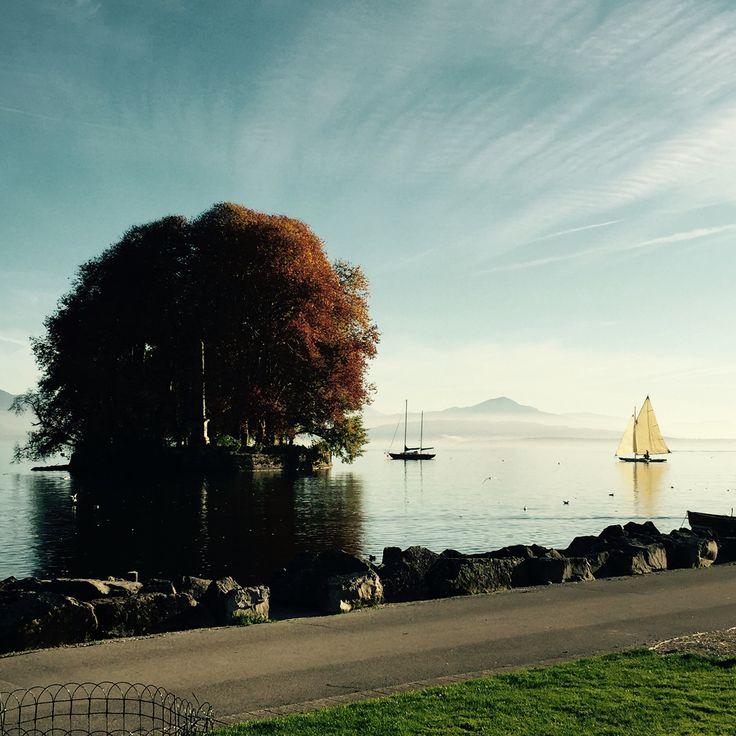 Rolle - Switzerland - La Harpe Island