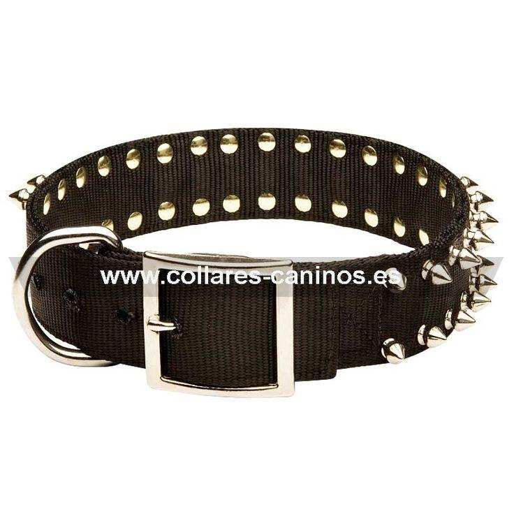 """Ancho #collar de #nylon con púas """"Rosa de espinas""""-> 19,90 € @fordogtrainers.es No dejes de pulsar """"me gusta"""""""