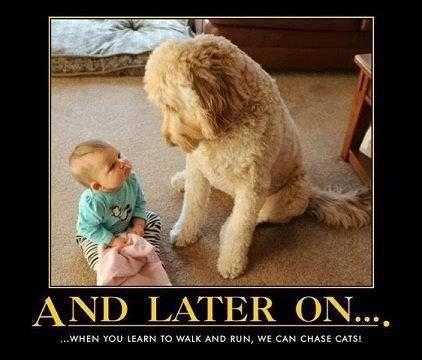 Friends teaching friends :)Puppies, Best Friends, Pets, Funny, Children, Bigdogs, Baby Dogs, Big Dogs, Animal