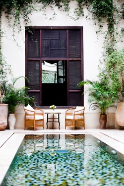 [CasaGiardino]  ♡  Southern vernacular...courtyard pool with shuttered windows...potted palms.