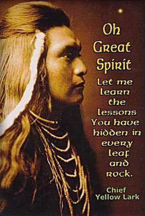 Oh Great Spirit Let Me Learn the Lessons You Have Hidden in Every Leaf and Rock...By Chief Yellow Lark...Native American Sayings, Quotes and Prayers...By Artist Unknown...