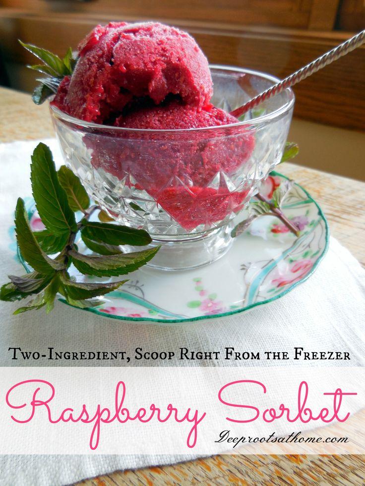 Summertime Raspberry Sorbet, 2 ingredients