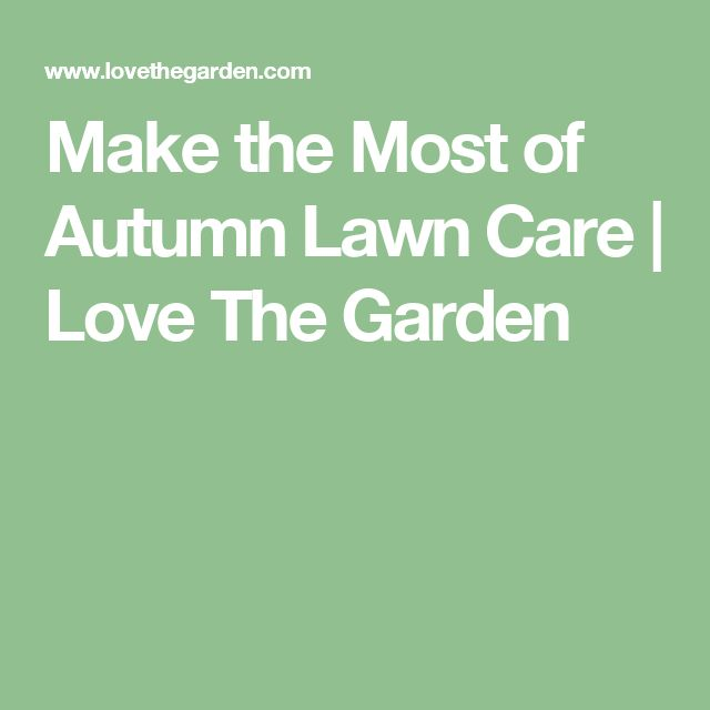 Make the Most of Autumn Lawn Care | Love The Garden