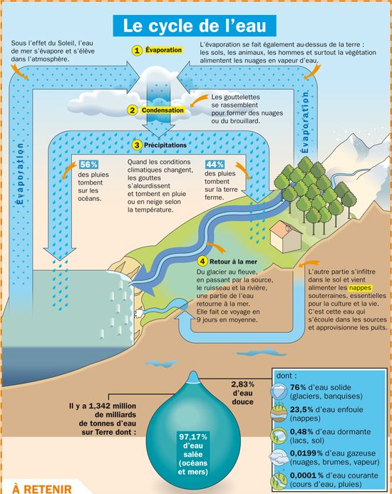 Fiche exposés : Le cycle de l'eau Could use for French I to identify the verbs. Relates what they already know about science to learning a new language!