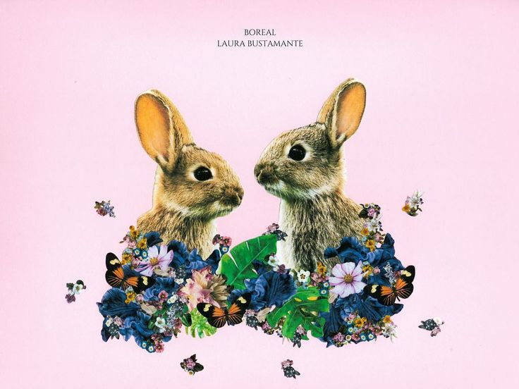 Rabbits ❤️❤️  #analog #paperart #c_expo #diseño #designs #decoracion #decohouse #decohome #independetdesigner  #artwork #ilustration  #artista #handmadecollage #collage #collageart #art #artanimal #koala #deco #handmade