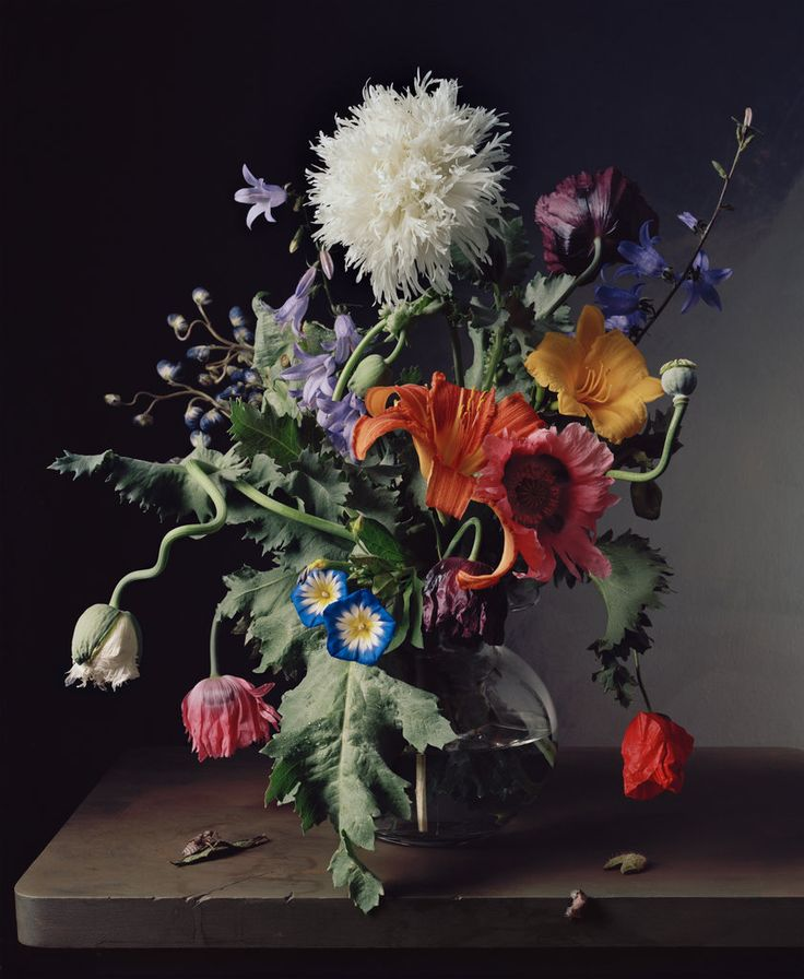 These striking floral still-lifes by New Orleans-born photographer Sharon Core seek to replicate the oil paintings of the Old Masters (and do so magnificently!). I spotted them over at T Magazine yesterday and couldn't resist sharing them with you. Sharon painstakingly reconstructs the arrangements of historic paintings in her studio and the finished photos are so accurate you can almost smell the …