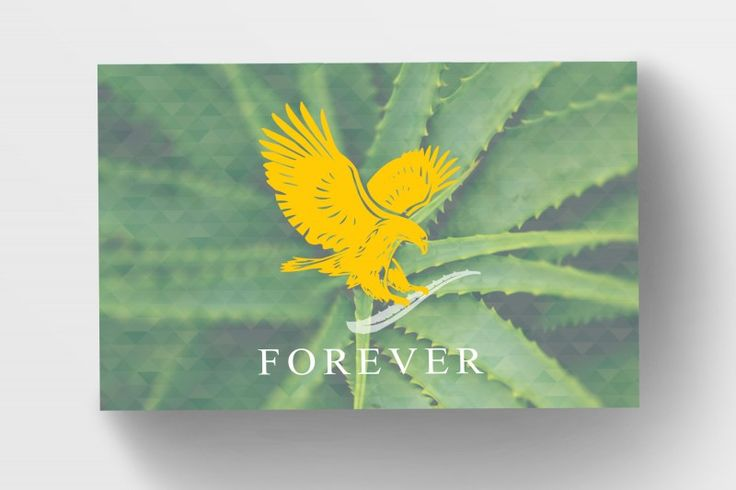 Forever Living Business Cards - Aloe, From: £29.98