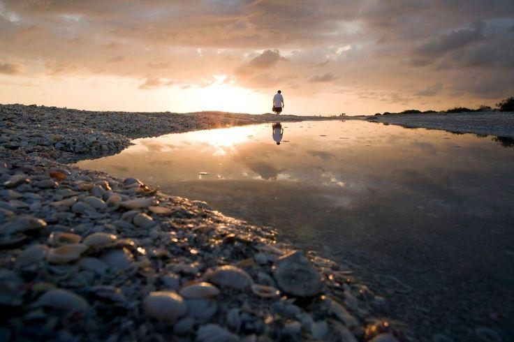 Bowman's Beach, Sanibel Island, Florida. Schelpenverzamelaar vinden hier rijkdommen aan omhulsels van zeedieren die een ritje gemaakt hebben op de Golf van Mexico. Vergeet je hoed, emmer en zonnebrand niet!
