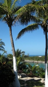 Starfish Cottage, Direct Waterfront Cottage on large, tropical, private estate