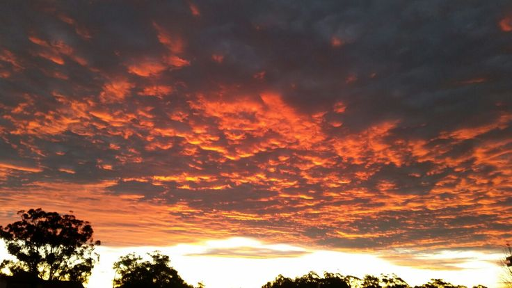 West Pennant Hills 30th June 2016