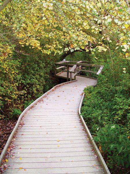 20 walking and hiking trails to exercise your body and soul - Cape Cod Magazine - Cape Cod GUIDE 2010 - Cape Cod