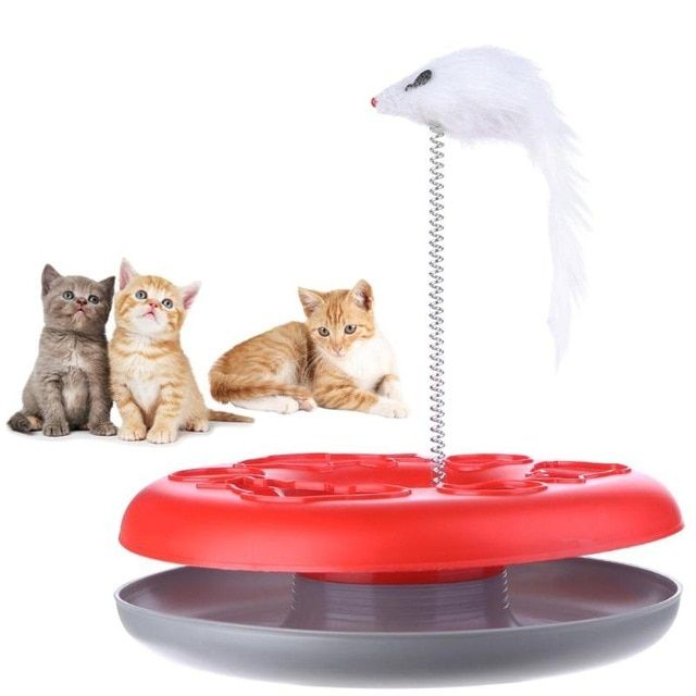 Cat Mouse Toy Crazy Amusement Disk Multifunctional Disk Play Activity Pet Funny Mouse Toys For Cats Review Pet Cat Toys Kitten Toys Cat Toys