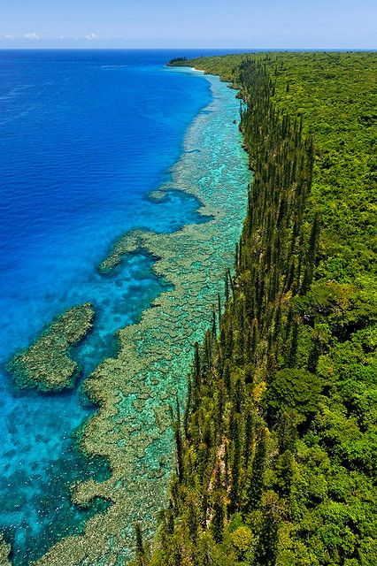 NEW CALEDONIA! Explore the beautiful coastline in New Caledonia! #NewCaledonia - Visit www.ncvoyages.com.au