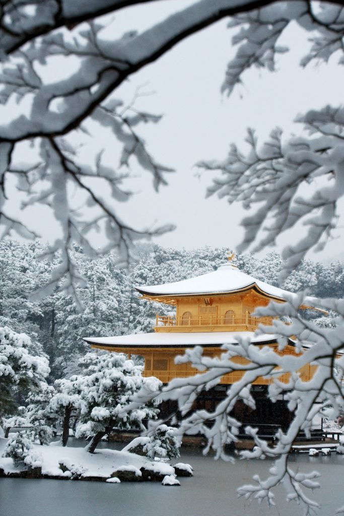 Snow in Golden Pavilion - Kinkaku-ji Temple, Kyoto, Japan