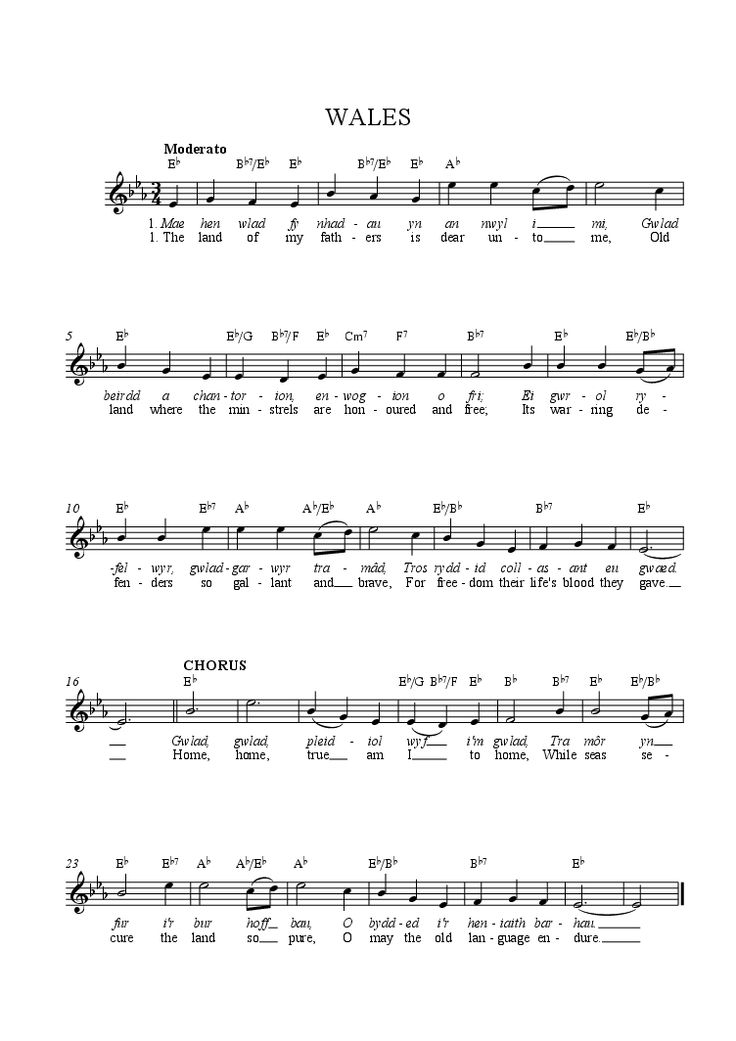 Mae hen wlad lyrics