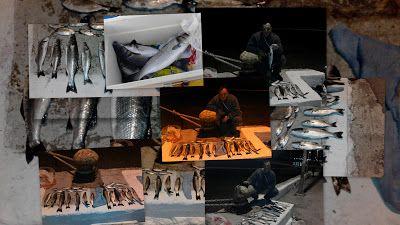 Το ψάρεμα στη ζωή του Ανθρώπου: ΦΩΤΟΓΡΑΦΙΕΣ