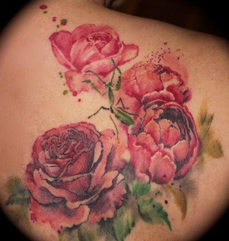 Wakitu: Rosenranke abgeheilt | Tattoos von Tattoo-Bewertung.de