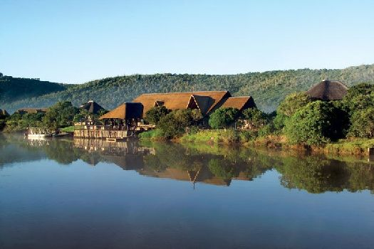 Kariega Game Reserve in the Eastern Cape has a fantastic selection of 4 and 5 star lodges to choose from.