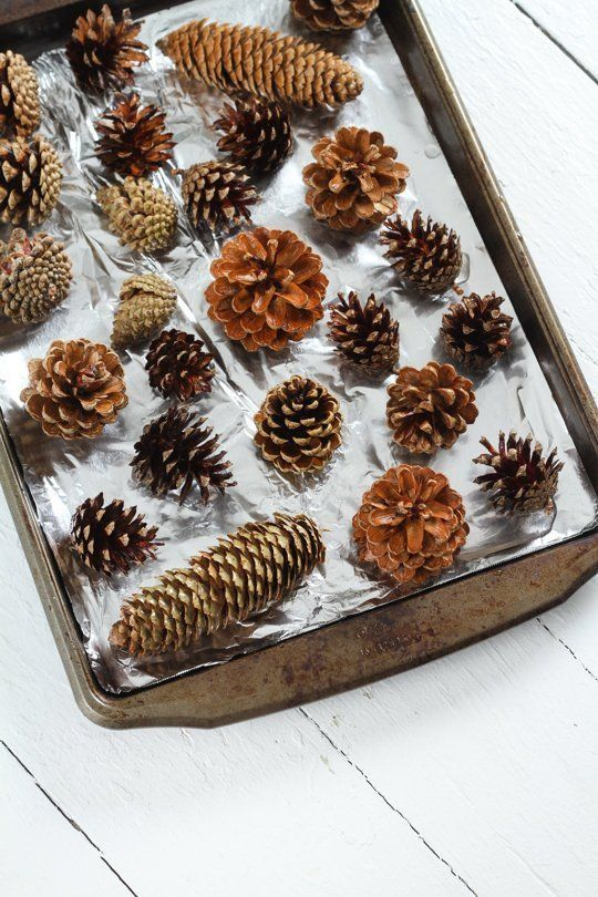 Did you know it's easy to make your own scented pinecones?  Here's what you need!  - Pinecones - Essential oils - Gallon zip-top bag - Large bowl or sink filled with water - Cookie sheet - Oven