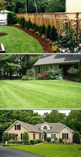 Personal Touch Lawn & Landscape has been efficiently providing shrub trimming and hedge cutting services in Boyd for more than 30 years. They offer negotiable rates on professional tree cutting services.