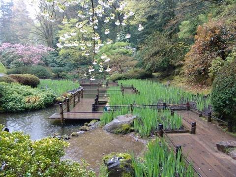 193 Best Family Garden Images On Pinterest Landscaping