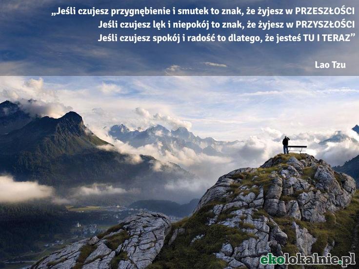 co czujesz i gdzie jesteś? http://ekolokalnie.pl