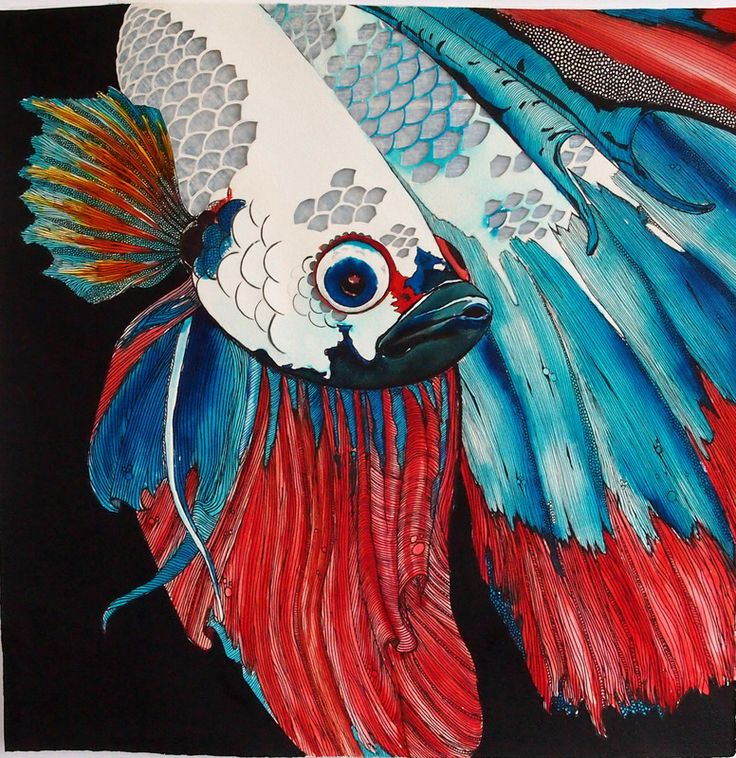 """©Holly Gordon """"Beneath the Floodplains (Siamese fighting fish)"""" 2014, Watercolour, pen, ink, 58x58cm (Private Collection)"""