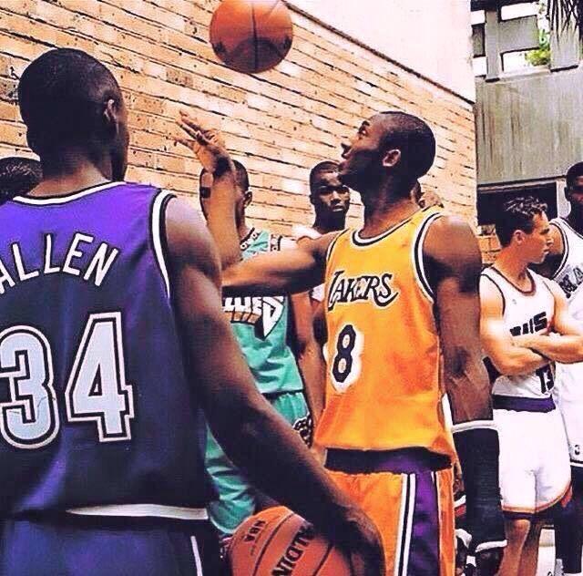 Black mamba #kobe #brayant #lakers #allstar #youngkobe #8 #lax #purpleyellow #basket #nba