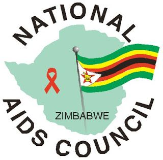 National Aids Council of Zimbabwe says unmarried women are contributing to the spread of HIV http://ift.tt/2u3bfzI