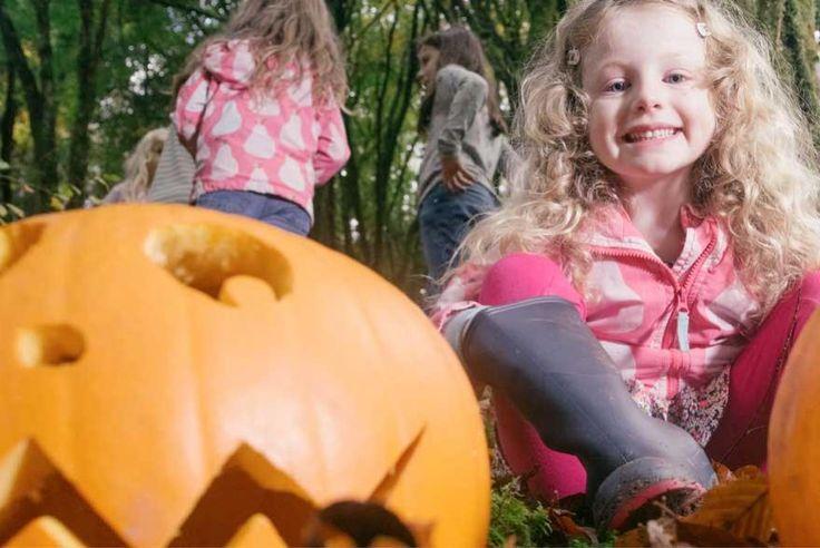 Halloween at Bluestones National Park