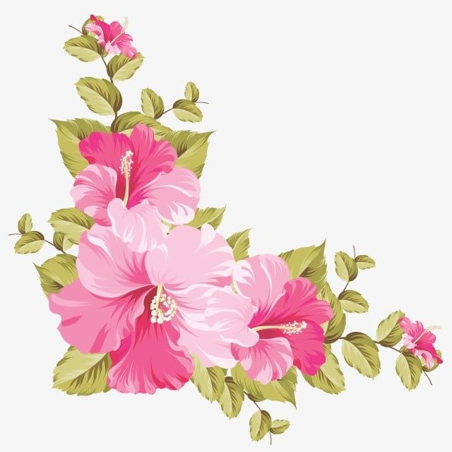 Pink Flower Frame Flowers Rose Wattercolor Png And Vector With Transparent Background For Free Download Flower Frame Png Pink Flowers Background Flowers Photography Wallpaper
