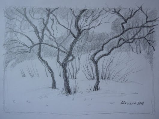 Света Кокшина Зимние деревья