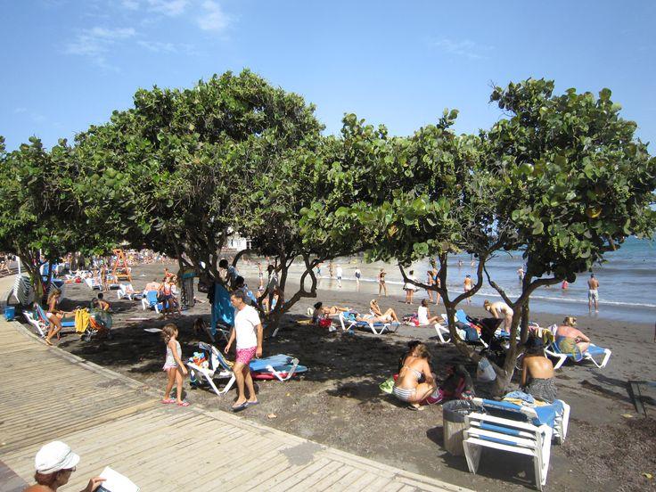 El Medano - Beach