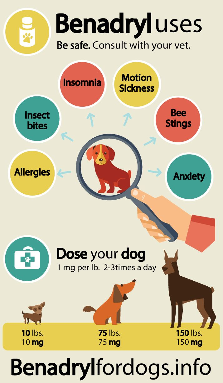 Uses of Benadryl for dogs. Consult with your vet first before usage.