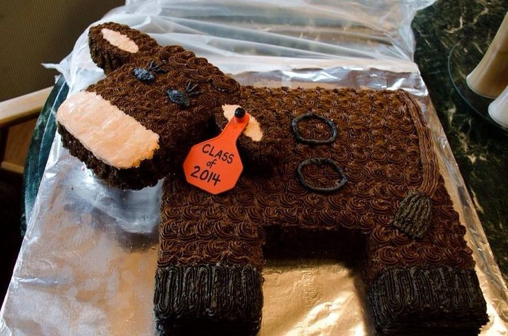This was done by our neighbor lady and if she's still around I believe he will be making my wedding cake something like this-Lorna dobbins