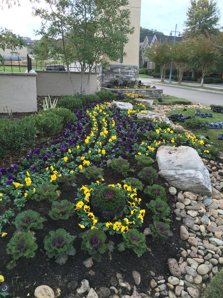 Best 25 Commercial landscaping ideas on Pinterest Salvia Front