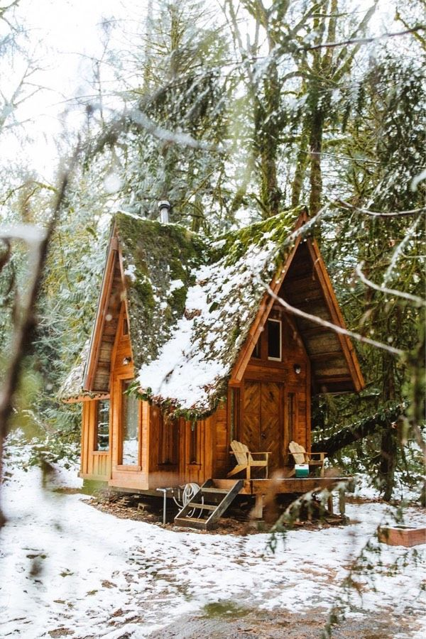 22 Must See Winter Cabins Deep In The Woods Deluxe Timber Little Cabin Winter Cabin Cottage In The Woods