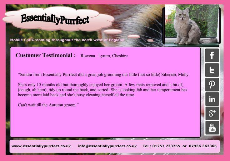Customer Testimonial of EssentiallyPurrfect #mobile #Siberian #SiberianForestCat #cat #catgrooming service. Rowena #Lymm #Cheshire