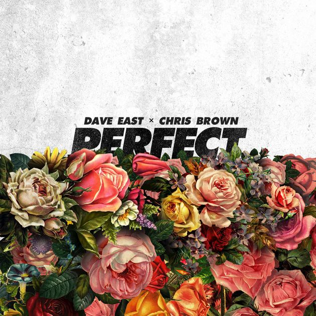 Perfect (feat. Chris Brown) - Single by Dave East on Apple Music https://itunes.apple.com/us/album/perfect-feat-chris-brown-single/id1263610754?i=1263611206&utm_campaign=crowdfire&utm_content=crowdfire&utm_medium=social&utm_source=pinterest