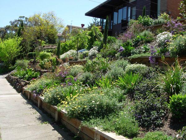 Drought Tolerant Garden Ideas Gardenscape Design
