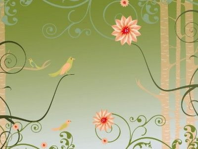 Best Background Images On   Indian Bridal Indian
