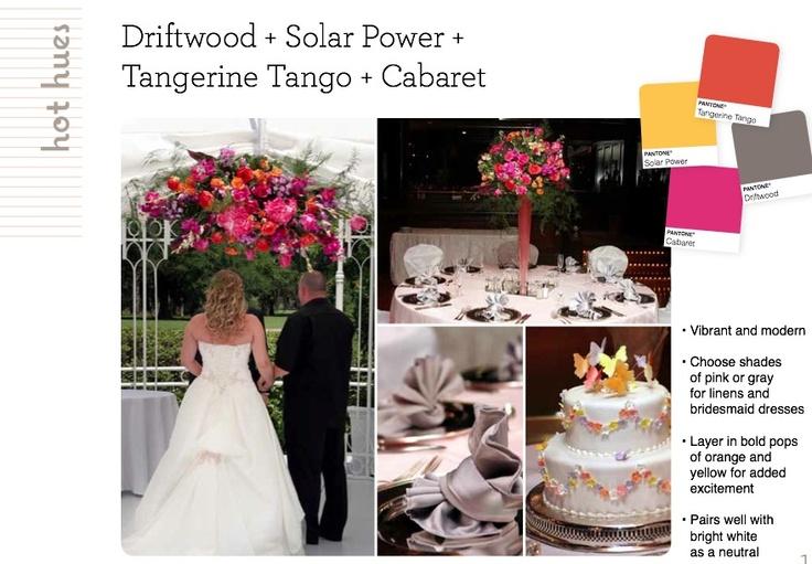 Driftwood, Solar Power, Tangerine Tango + Cabaret
