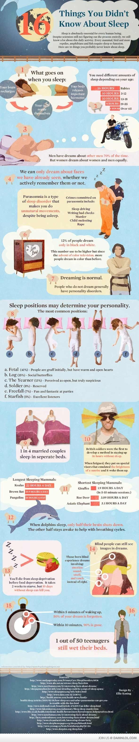 16 Things You Didn't Know About SleepStuff, Random, Fun Facts, Sleep Facts, 16 Things, Interesting, Health, 16 Facts, Sleep Infographic