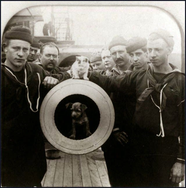 """Crewmen of the USS Texas pose with mascot dog and cat on the muzzle of one of the ship's 12""""/35 guns, ca. 1900. Built in 1892, The Texas was the first U.S. battleship and gained a reputation for being jinxed because of a series of accidents. The crew probably hoped the cat and dog would change the ship's luck."""