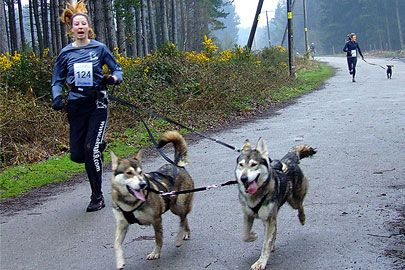 Canicross: An Easier Way to Run With Your Dog. EVERYONE should do it with their dogs!