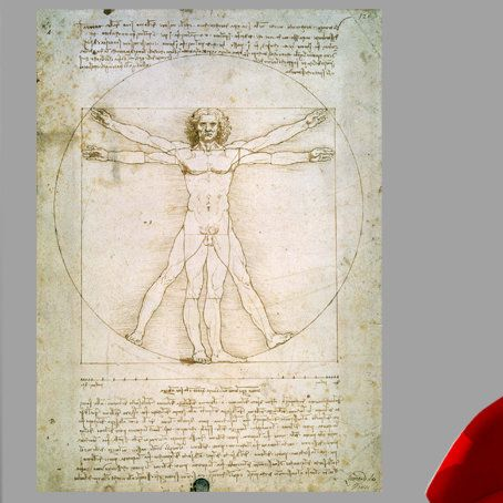 Da Vinci The Proportions of The Human Figure (1492) Wall Decal