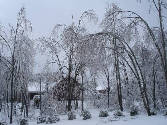 2009 kentucky ice storm pictures | , KY - Photo of the Ice Storm that paralyzed Owensboro, Kentucky ...