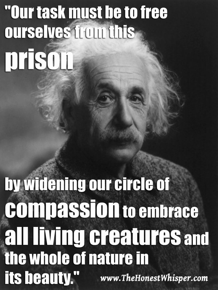 animal rights quotes famous