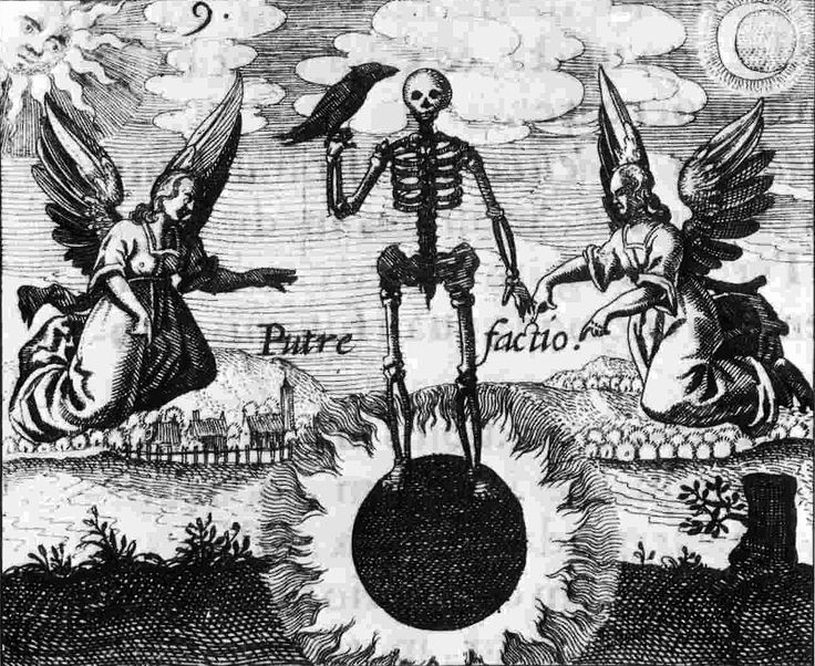 35 Rosarium Philosophorum ideas | alchemy, occult, alchemy art
