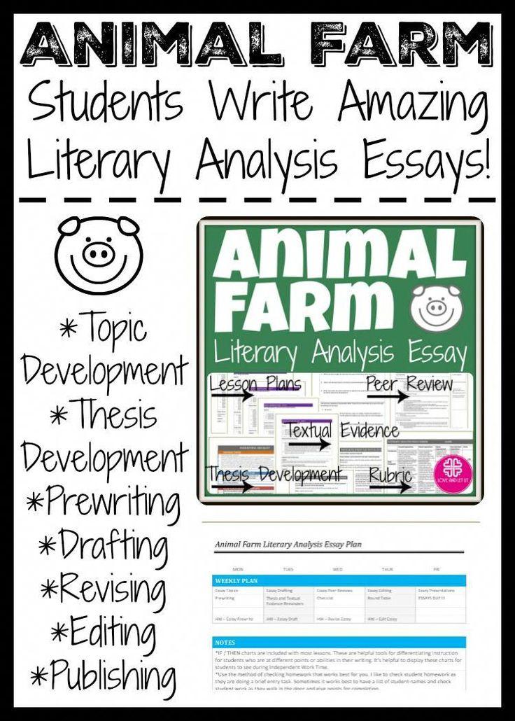 Website for essays